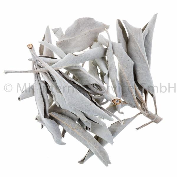 White Sage - Weißer Salbei (USA) 25 g
